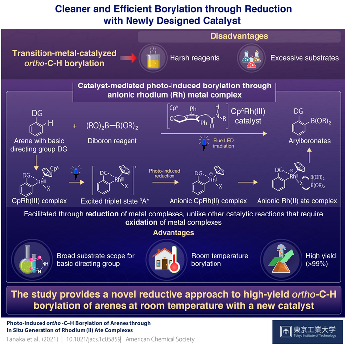 Cleaner and Efficient Borylation through Reduction with Newly Designed Catalyst