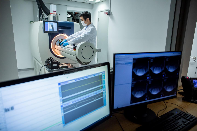 CityU's 3T MRI Animal Scanner