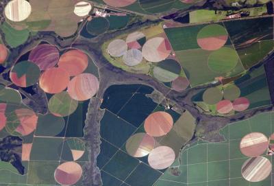 Agricultural Landscape in Brazil