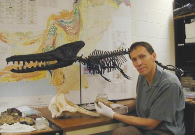 Unraveling Whale Evolution