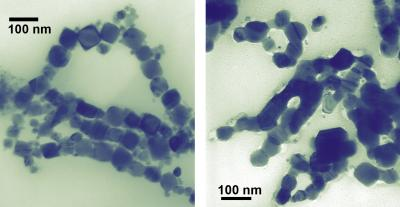 Shape Matters in the Case of Cobalt Nanoparticles