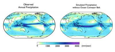 Global Precipitation