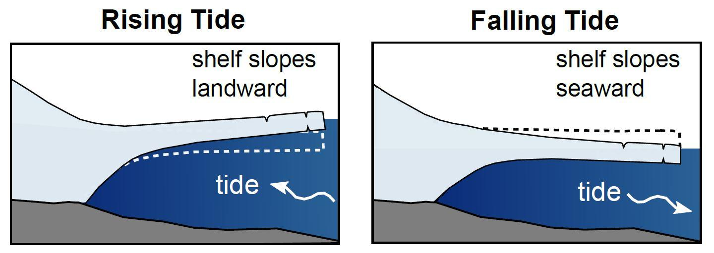 Drawing of cross sections of floating ice shelf shows lifting and falling effect of tides.