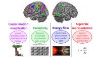 How the Brain Repurposes Itself To Learn Scientific Concepts