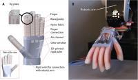 Innervated Prosthetic Hand