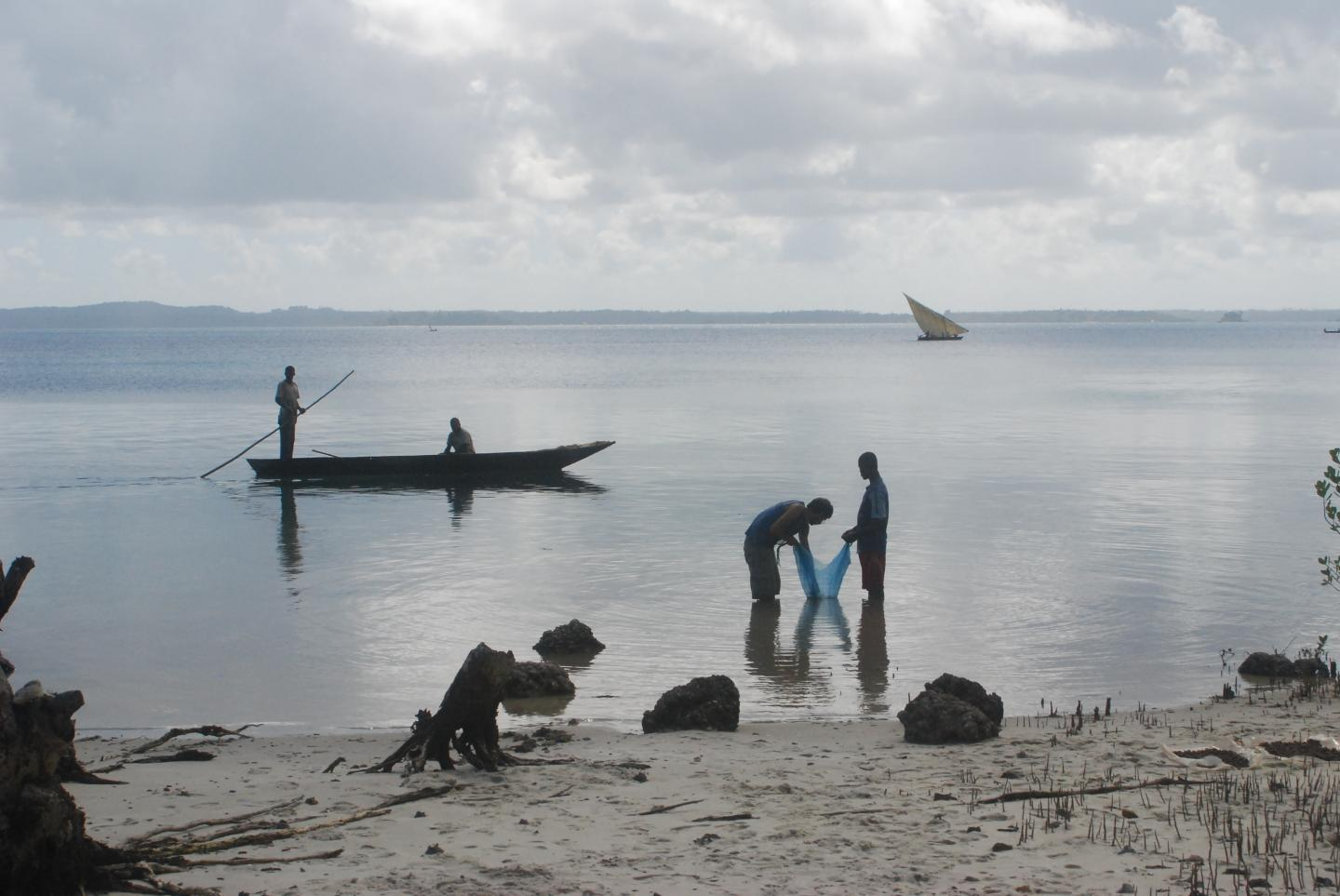 Recovering Plant Remains on the Coast of East Africa