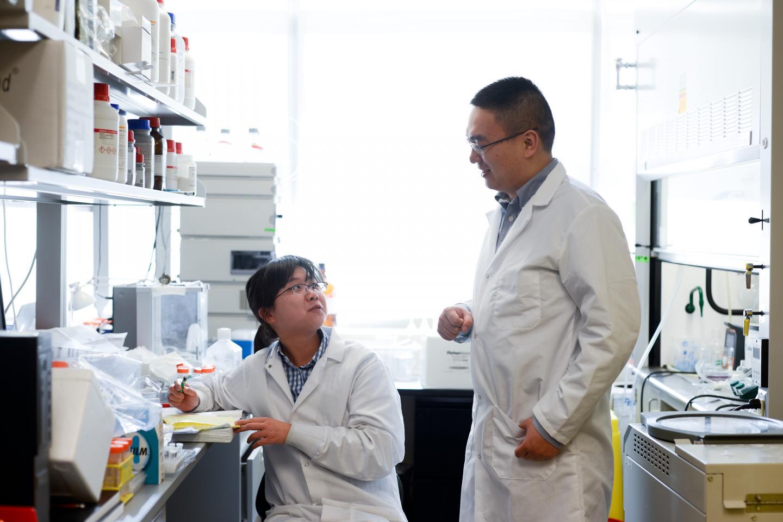 Yue Lu and Zhen Gu, Carolina State University