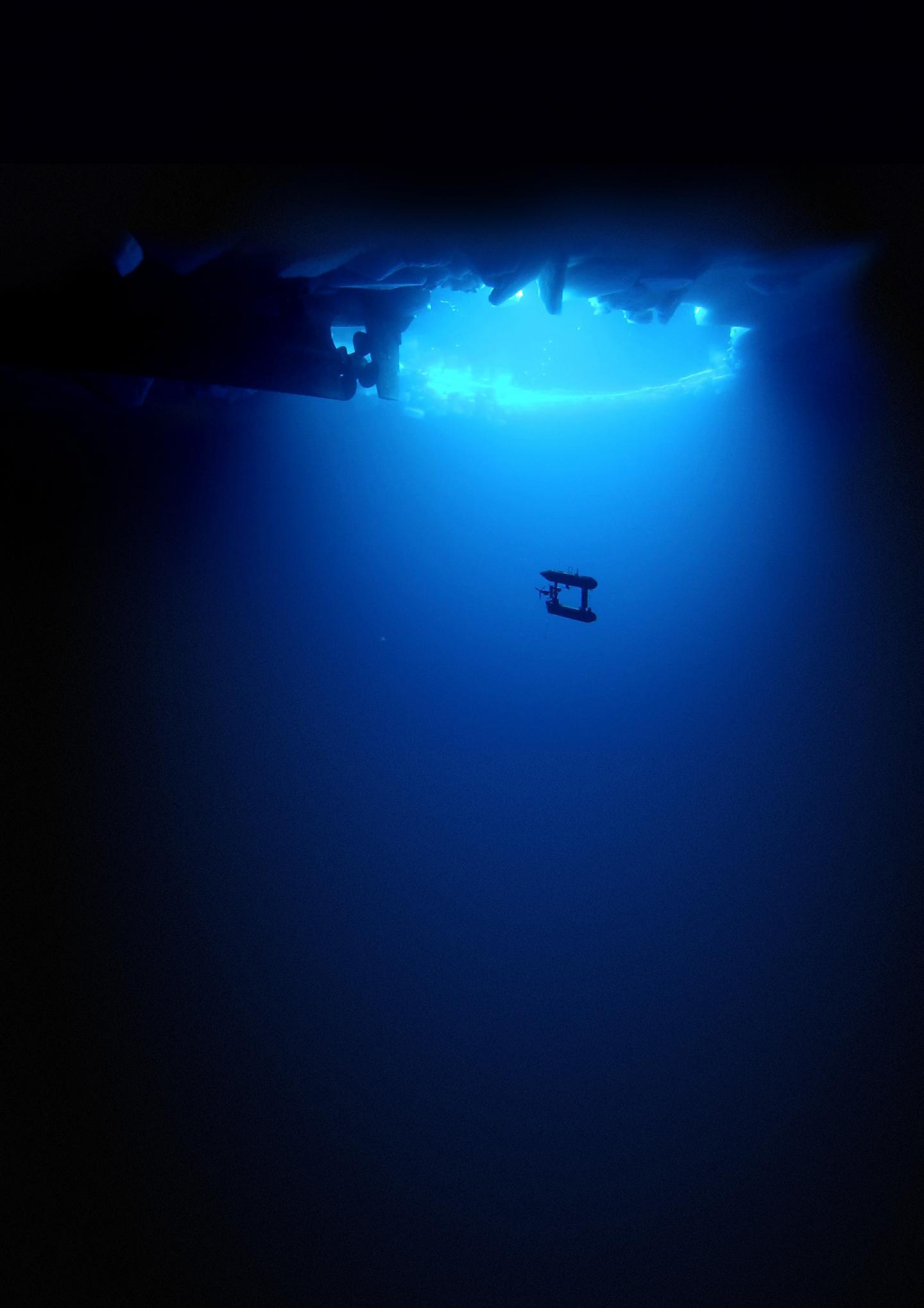 AUV Under Water