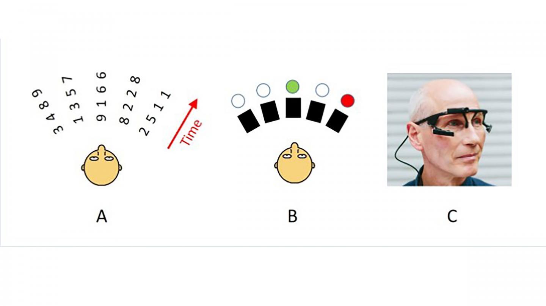 Eye Tracking and Speech Intelligibility