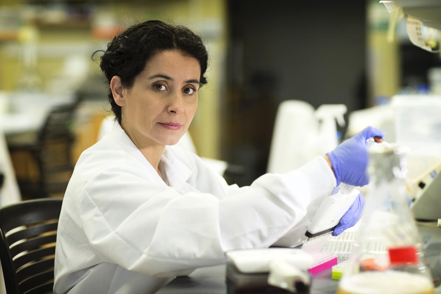 Diet, Gut Microbes Affect Cancer Treatment Outcomes, Research Suggests