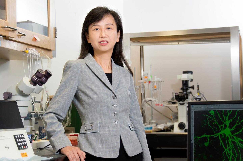 Zhen Yan, University at Buffalo