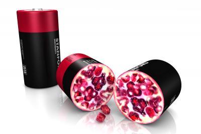 'Pomegranate-Inspired' Design