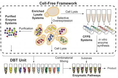 Cell-Free Systems Workflow of Outlined in the Latest JGI ETOP Proposal