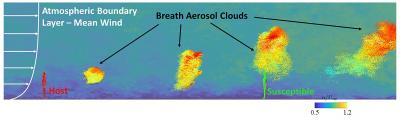 Large-Eddy Simulation Results Of The Aerosol