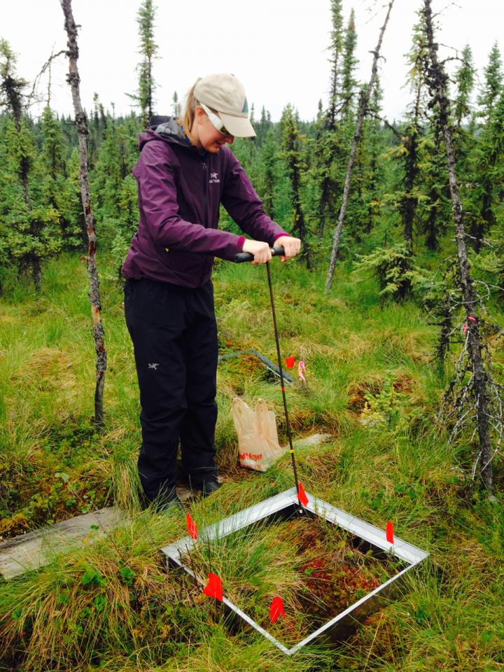 Probing Permafrost
