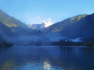 Misty morning near the habitat of Glacier pit viper