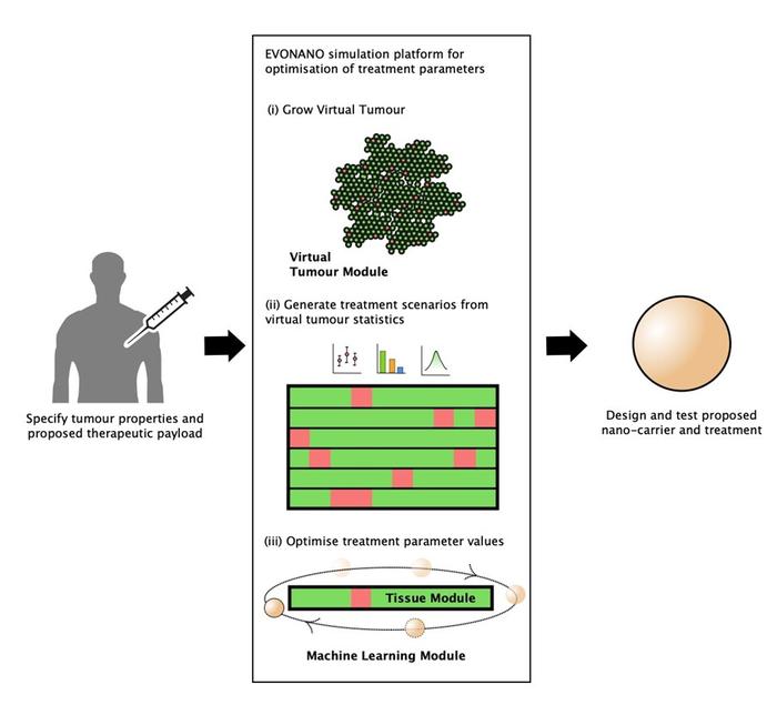 EVONANO simulation platform for optimisation of treatment parameters