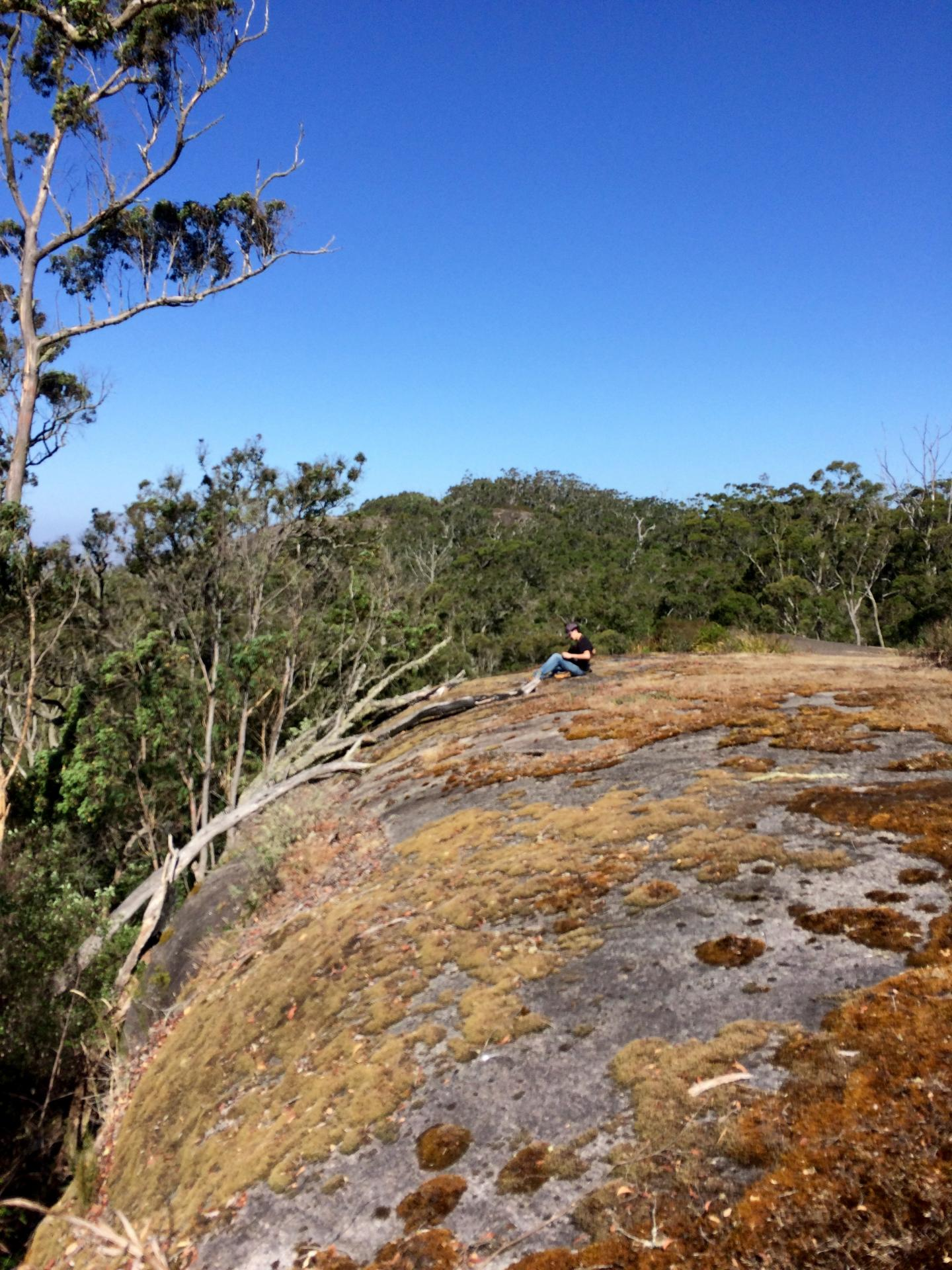 Lead Author in the Field on a Lichen-Covered Rock