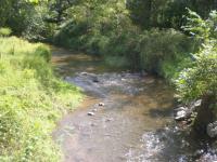 stream edges