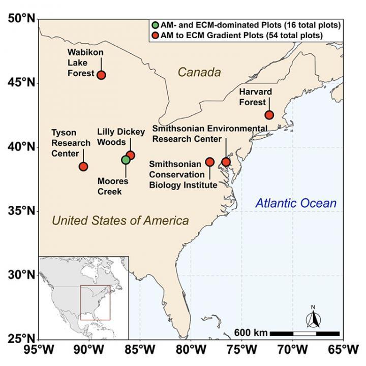 Soil sampling location map
