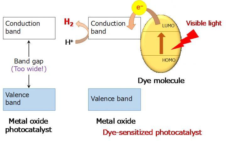 Dye-Sensitized H2 Evolution Using a Wide-Gap Metal Oxide