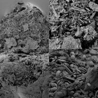 Electron Microscope Images of Degraded Plastic Particles