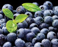 Antioxidant-Rich Blueberries