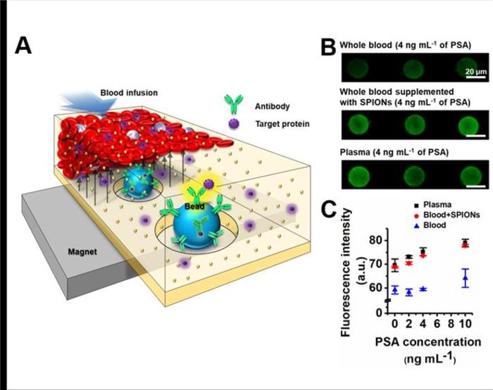 Diamagnetic plasma separation method for biomarker detection