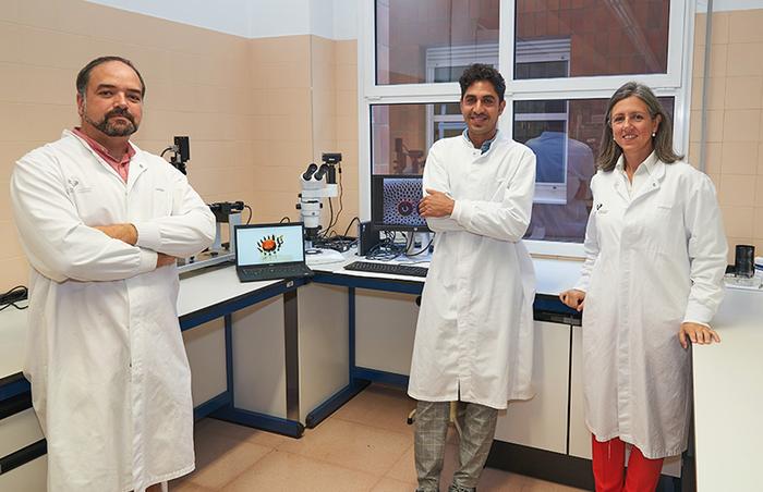 UPV/EHU's Microfluidics Cluster