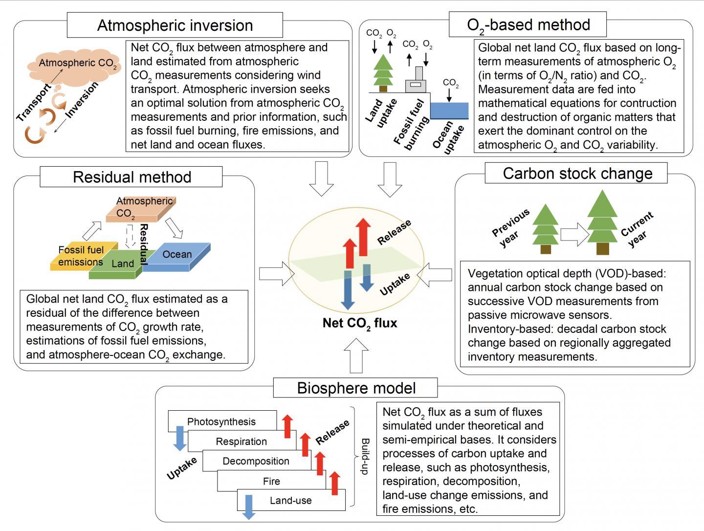 CO2 Flux Estimation