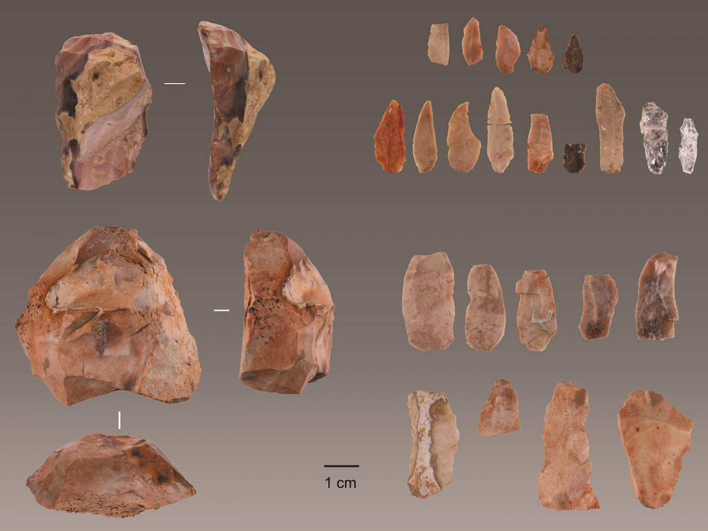 Tools discovered in Lapa do Picareiro in central Portugal.