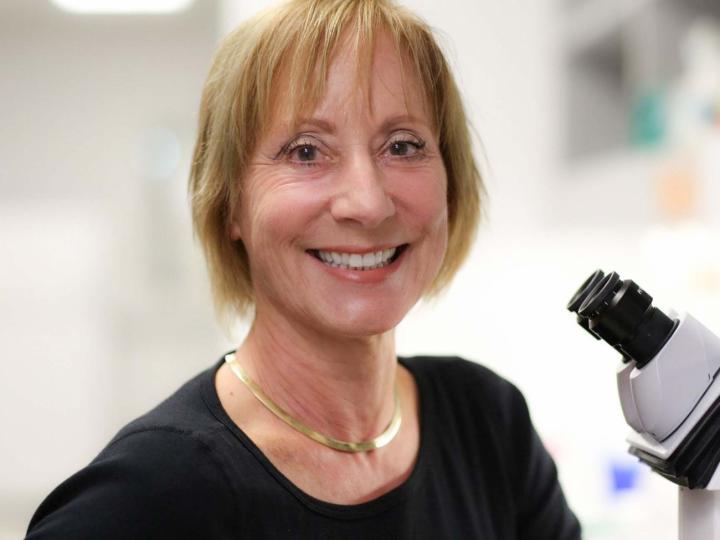 Karen Ocorr, Ph.D., Sanford Burnham Prebys Medical Discovery Institute