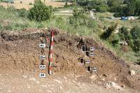 1,000-Year-Old Vineyards Discovered in Alava (2 of 2)