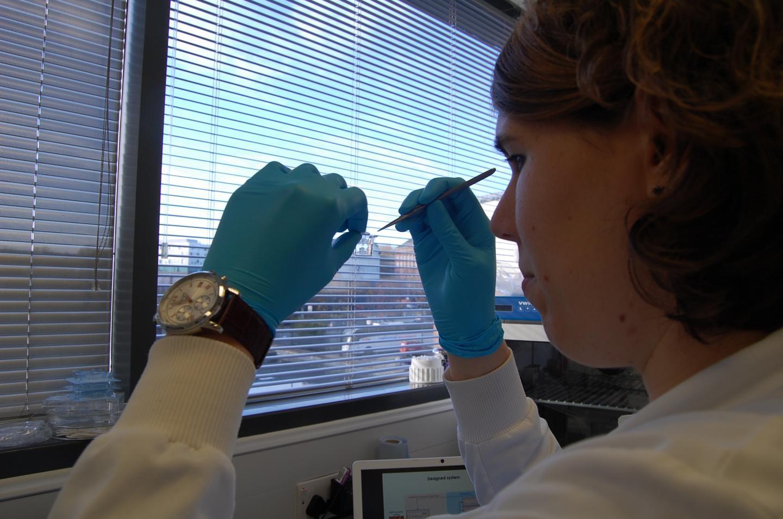 Martina Miotto in the Lab