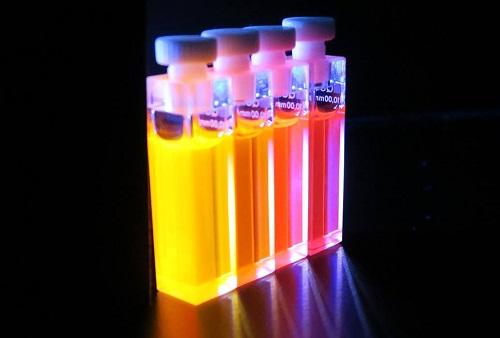 Fluorescence of the Conjugated Polymers in Solution