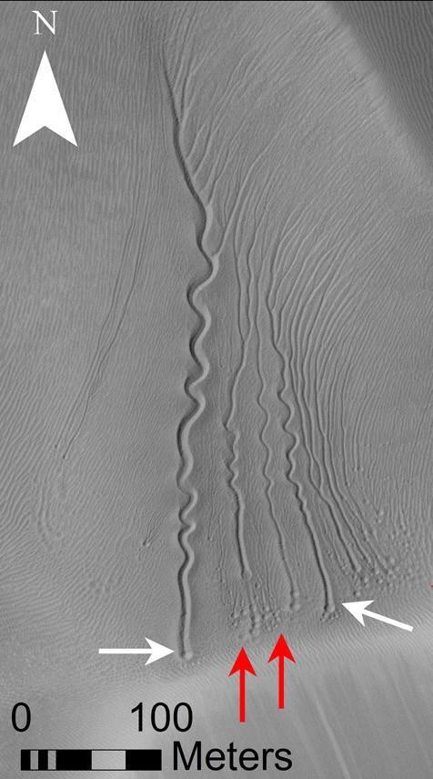 Linear Gullies on a Dune in Matara Crater, Mars