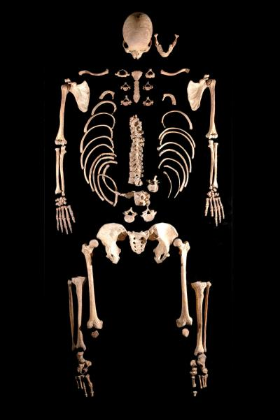 7000‑Year‑Old Skeleton Discovered in Leon (Spain)