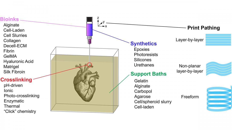 Customizability of the FRESH bioprinting platform