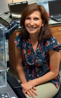 Denise Montell, University of California, Santa Barbara