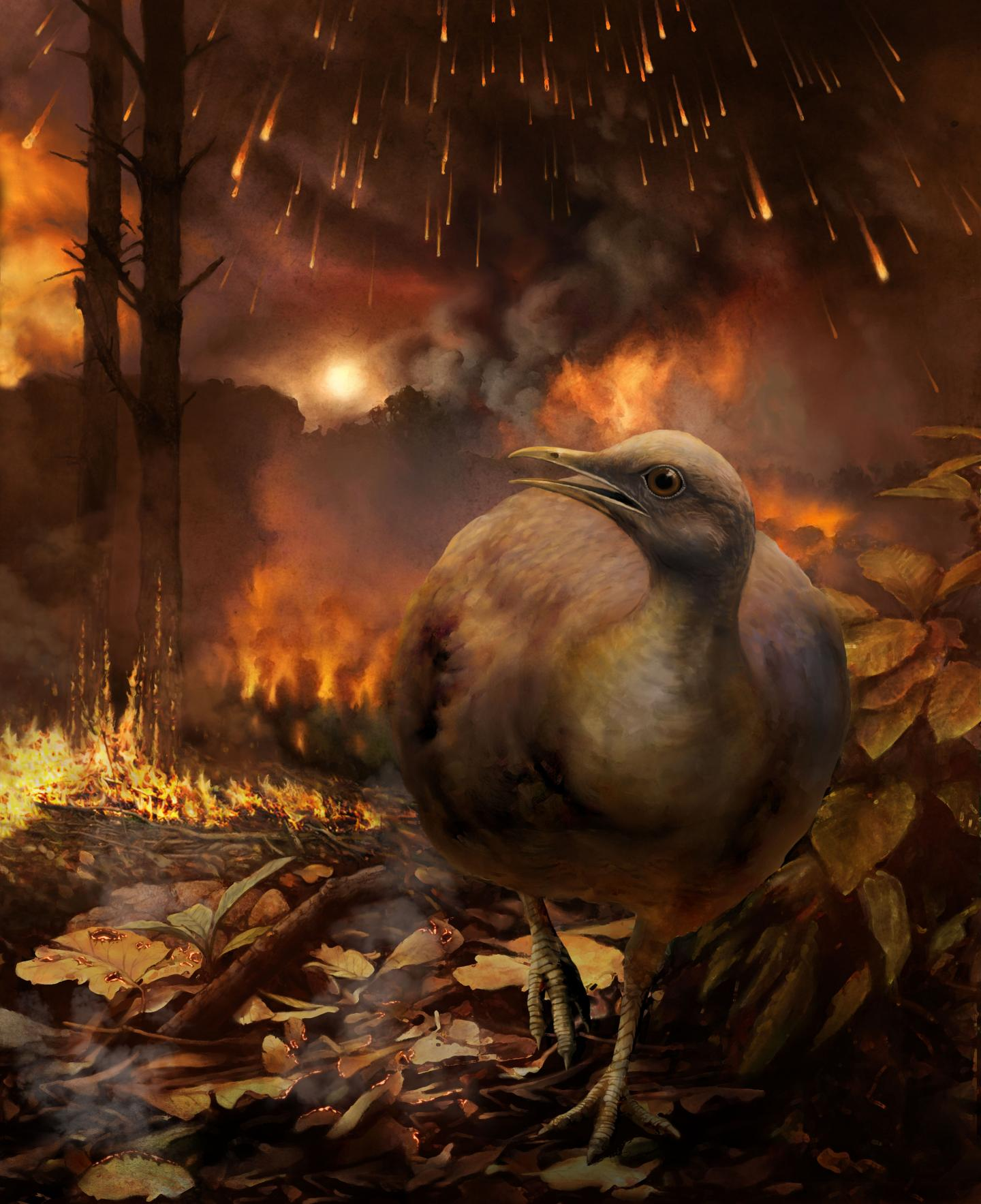 Bird Flees a Burning Forest in the Aftermath of the Asteroid Strike