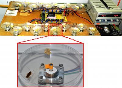Motor-driven Artificial Antennae