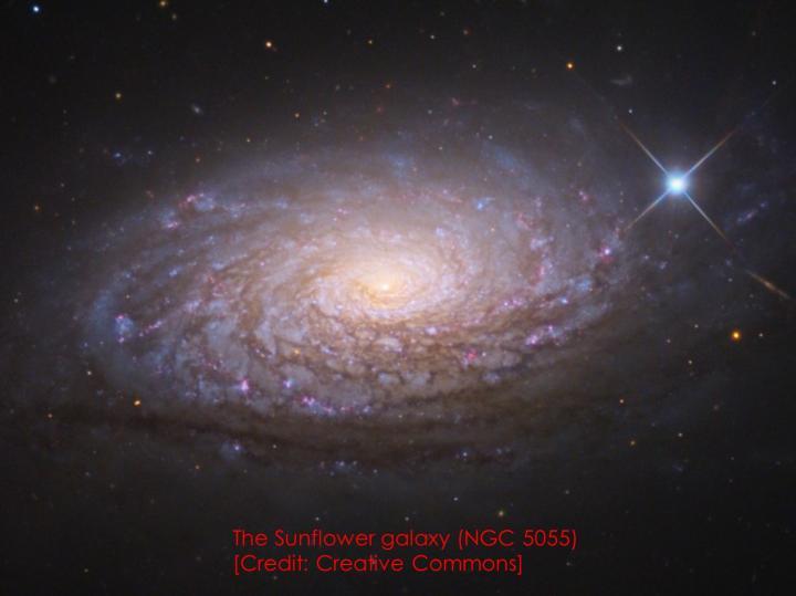 'Sunflower' galaxy