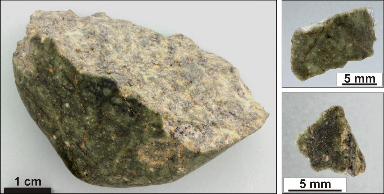 Fragments of the lunar meteorite