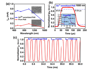 Sn2+ Sensitization Improves the Photoelectric Performance of PbS-based Photodetectors