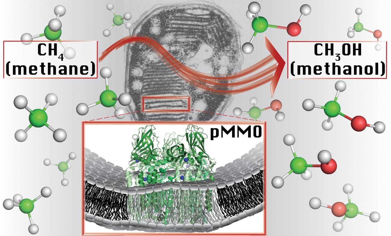 Methane-To-Methanol Conversion