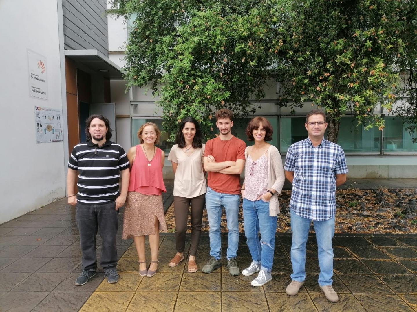 Silvopasciculture research group (AGR 221)