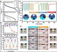Fig. 2 Dynamic Electrochemical Performance