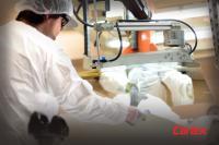 Carlex Glass America Licenses ORNL Superhydrophobic Coatings for Automotive Applications 3