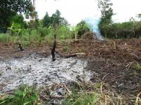Burned Deforested Land in Uganda