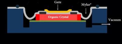 Organic Transistor Cross-Section